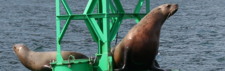 cropped-Valdez-May-2009-seals.jpg